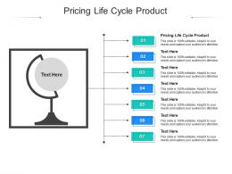 Pricing Life Cycle Product Ppt Powerpoint Presentation Model Objects Cpb
