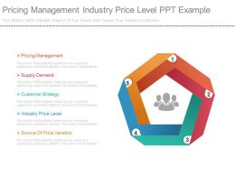 Pricing Management Industry Price Level Ppt Example