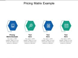 Pricing Matrix Example Ppt Powerpoint Presentation Icon Designs Download Cpb
