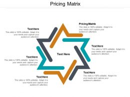 Pricing Matrix Ppt Powerpoint Presentation Pictures Professional Cpb