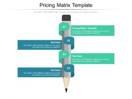 Pricing Matrix Template Ppt Powerpoint Presentation Infographic Template Design Templates Cpb