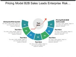 Pricing Model B2b Sales Leads Enterprise Risk System Cpb
