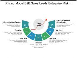 Pricing Model B2b Sales Leads Enterprise Risk System Cpb