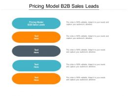 Pricing Model B2B Sales Leads Ppt Powerpoint Presentation Pictures Icon Cpb