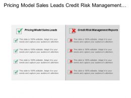 Pricing Model Sales Leads Credit Risk Management Reports Cpb