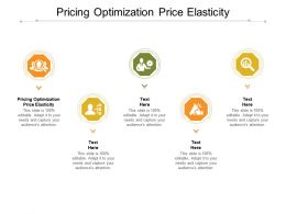 Pricing Optimization Price Elasticity Ppt Powerpoint Presentation Infographic Template Aids Cpb