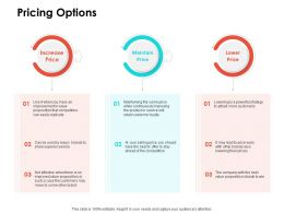 Pricing Options Ppt Powerpoint Presentation Outline Background