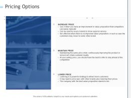 Pricing Options Ppt Powerpoint Presentation Styles Example Introduction