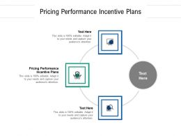 Pricing Performance Incentive Plans Ppt Powerpoint Presentation Slides Diagrams Cpb