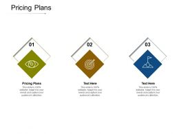 Pricing Plans Ppt Powerpoint Presentation Icon Influencers Cpb
