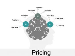 Pricing Ppt Powerpoint Presentation File Introduction Cpb