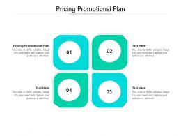 Pricing Promotional Plan Ppt Powerpoint Presentation Styles Graphics Cpb