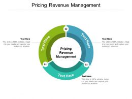 Pricing Revenue Management Ppt Powerpoint Presentation Pictures Show Cpb