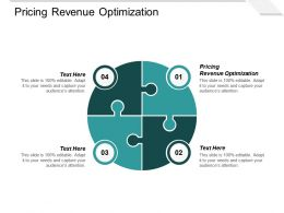 Pricing Revenue Optimization Ppt Powerpoint Presentation Professional Styles Cpb