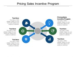 Pricing Sales Incentive Program Ppt Powerpoint Presentation Layouts Graphics Cpb