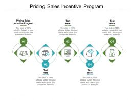 Pricing Sales Incentive Program Ppt Powerpoint Presentation Slides Background Image Cpb