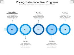 Pricing Sales Incentive Programs Ppt Powerpoint Presentation Pictures Outfit Cpb