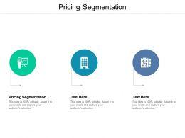 Pricing Segmentation Ppt Powerpoint Presentation Summary Files Cpb