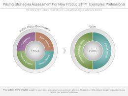 Pricing Strategies Assessment For New Products Ppt Examples Professional