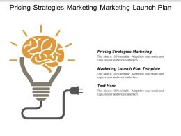 Pricing Strategies Marketing Marketing Launch Plan Template Product Pricing Cpb