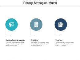Pricing Strategies Matrix Ppt Powerpoint Presentation Icon Deck Cpb