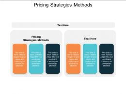 Pricing Strategies Methods Ppt Powerpoint Presentation Slides Themes Cpb
