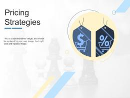Pricing Strategies Product Channel Segmentation Ppt Themes