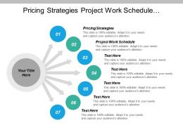 Pricing Strategies Project Work Schedule Performance Gap Analysis Cpb