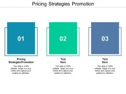Pricing Strategies Promotion Ppt Powerpoint Presentation File Deck Cpb