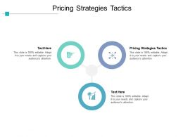 Pricing Strategies Tactics Ppt Powerpoint Presentation File Professional Cpb