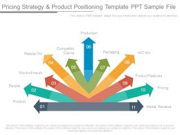 Pricing Strategy And Product Positioning Template Ppt Sample File