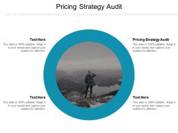 Pricing Strategy Audit Ppt Powerpoint Presentation Infographic Template Example 2015 Cpb