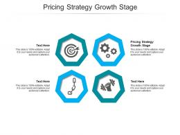 Pricing Strategy Growth Stage Ppt Powerpoint Presentation Gallery Templates Cpb