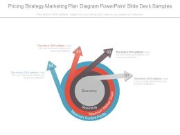 Pricing Strategy Marketing Plan Diagram Powerpoint Slide Deck Samples