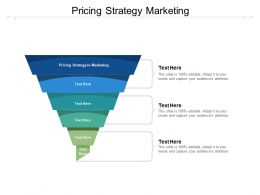 Pricing Strategy Marketing Ppt Powerpoint Presentation Ideas Guide Cpb