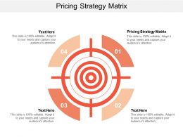 Pricing Strategy Matrix Ppt Powerpoint Presentation Pictures Background Designs Cpb