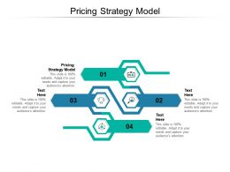 Pricing Strategy Model Ppt Powerpoint Presentation Styles Clipart Images Cpb