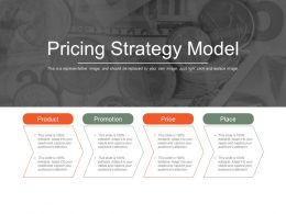 Pricing Strategy Model Ppt Sample
