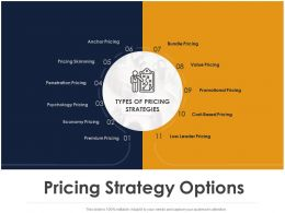 Pricing Strategy Options Ppt Powerpoint Presentation Model Design Inspiration