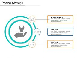 Pricing Strategy Ppt Powerpoint Presentation Icon Sample Cpb