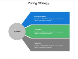 Pricing Strategy Ppt Powerpoint Presentation Layouts Show Cpb