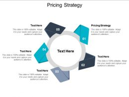 Pricing Strategy Ppt Powerpoint Presentation Summary Themes Cpb