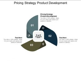 Pricing Strategy Product Development Ppt Powerpoint Presentation Infographics Elements Cpb