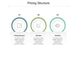Pricing Structure Ppt Powerpoint Presentation Slides Influencers Cpb