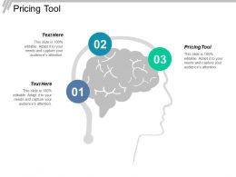 Pricing Tool Ppt Powerpoint Presentation Infographics Slides Cpb