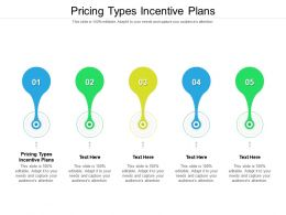 Pricing Types Incentive Plans Ppt Powerpoint Presentation Icon Clipart Images Cpb