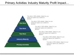 Primary Activities Industry Maturity Profit Impact Supply Risk
