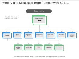 Primary And Metastatic Brain Tumour With Sub Categories