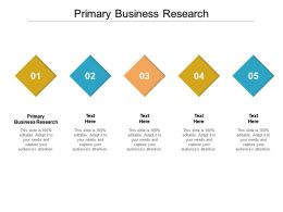 Primary Business Research Ppt Powerpoint Presentation Professional Example Cpb