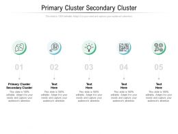 Primary Cluster Secondary Cluster Ppt Powerpoint Presentation Shapes Cpb